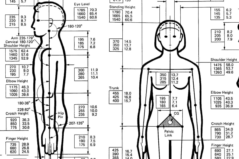 Calculadora corporal - Recibe un informe con tu estado..